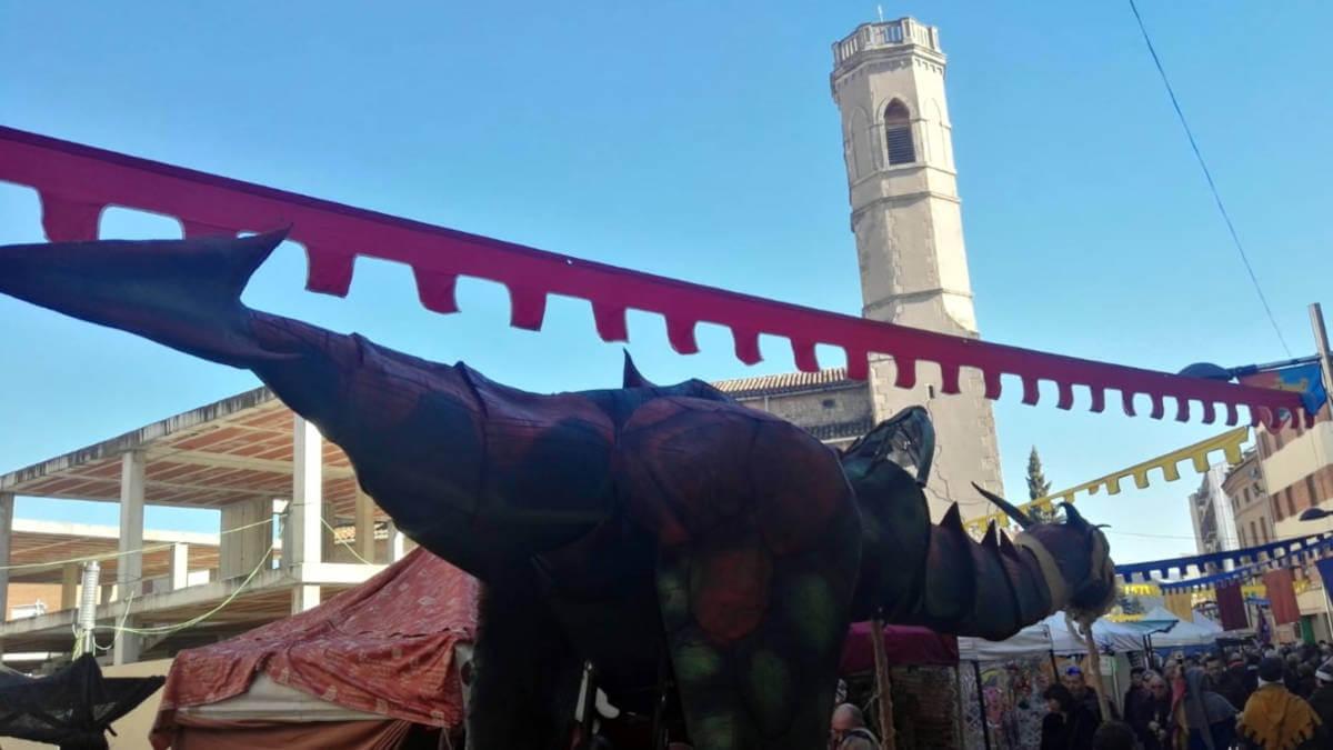 fira cami ral 12 gener (14) (Large)