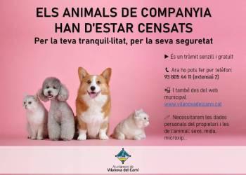 Campanya gossos