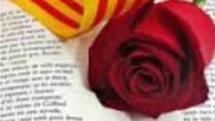 Sanj Jordi a biblioteca-imatge