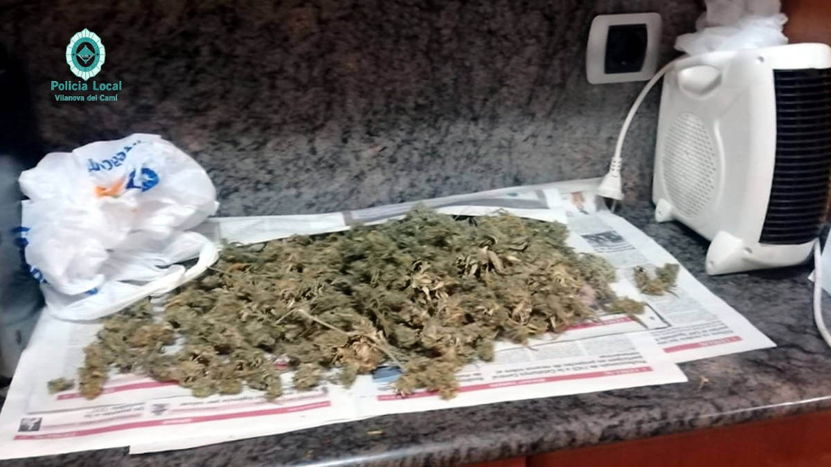 Plantacio marihuana 27mai20 2
