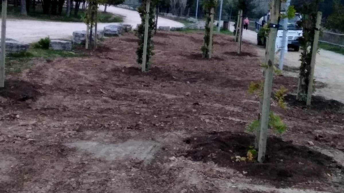 Plantat arbrat parc fluvial oct20