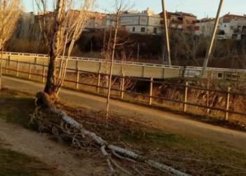 actuacions brigada parc fluvial feb21 2-1-dest