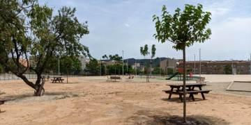 plantacio moreres picnic PMUr3