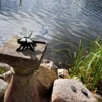 Sudenkorento vahtii rantaa