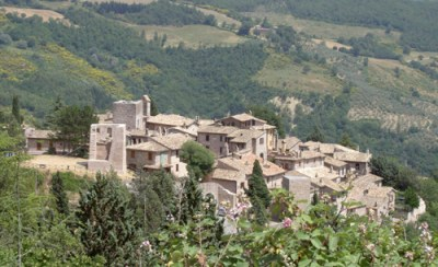 The local area 1