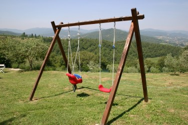Swing set with view