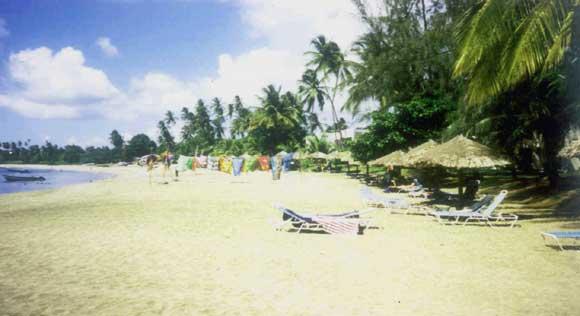 Villa Easytimes Tobago  Beaches Game Fishing Rain