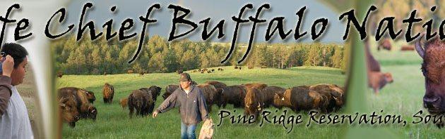Knife Chief Buffalo Nation