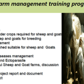 Goat Farming Training by Central Institute for Research on