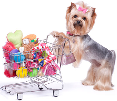 pet supplies store vero