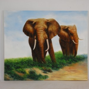 elephant-two-on-grass