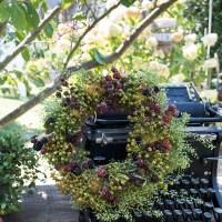 Erste Herbstdeko im Garten