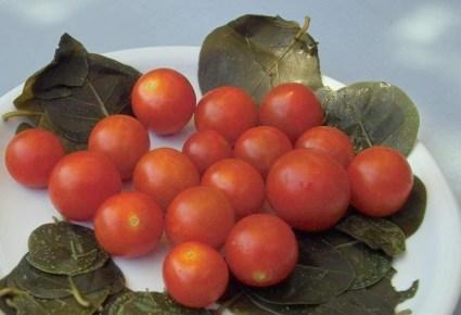 The cherry tomato of Santorini