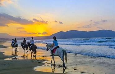 Trekking ed Escursioni a Cavallo
