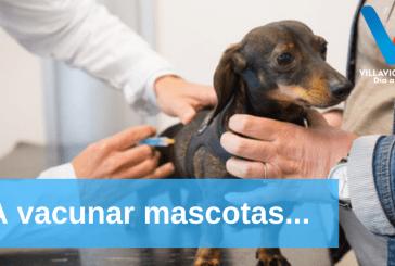 Mañana miércoles inician jornadas de vacunación animal