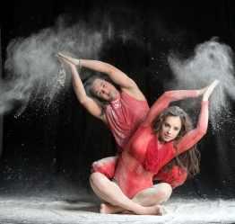 Danceline farine-1747 LOGO FB