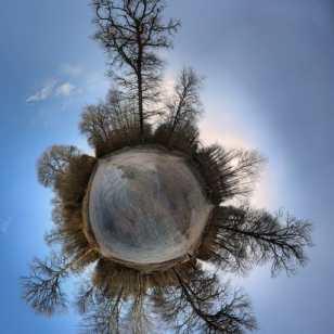 TEMPEZ Mireille - Une étoile en Forêt de Marly