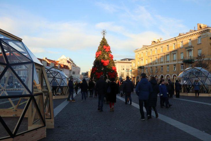 Christmas tree in Vilnius