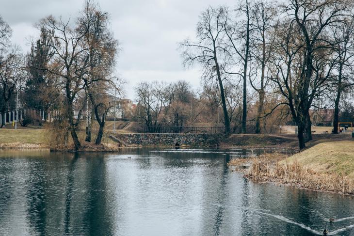 Park in zverynas vilnius