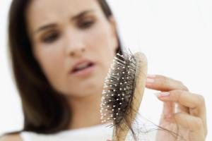 Saw palmetto rast vlasov