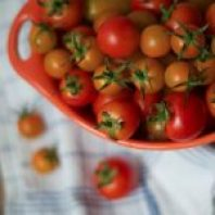 Vodka infused tomatoes. Cooking with Booze rules, doesn't it?