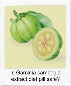 is the garcinia diet safe
