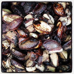 fat-burning-brazil-nuts