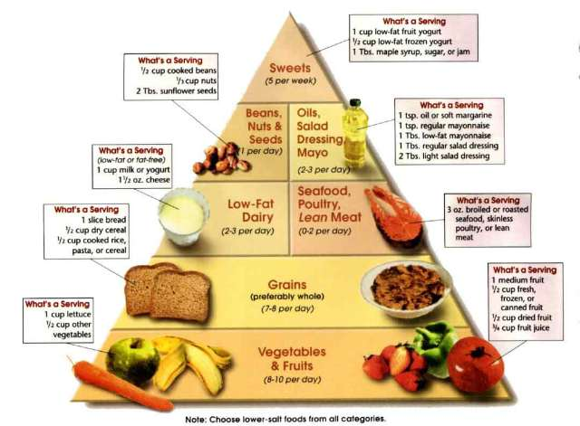 Atkins Diet: 11 Things Vim Chi Can Teach You About Atkins and Weight Loss Plateau