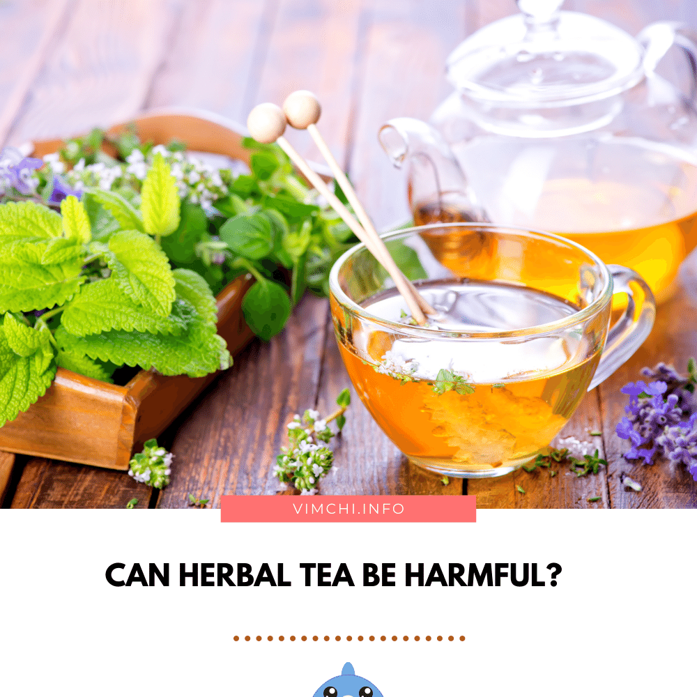 Is Herbal Tea Good for You - can it be harmful