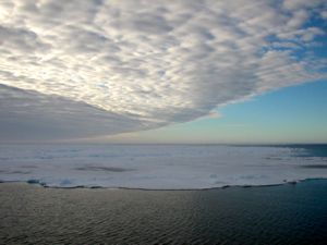 The extent and duration of ice cover in the Ross Sea depends on a complex interplay of factors, including changes in wind speed, precipitation, salinity, ocean currents, and air and water temperature.