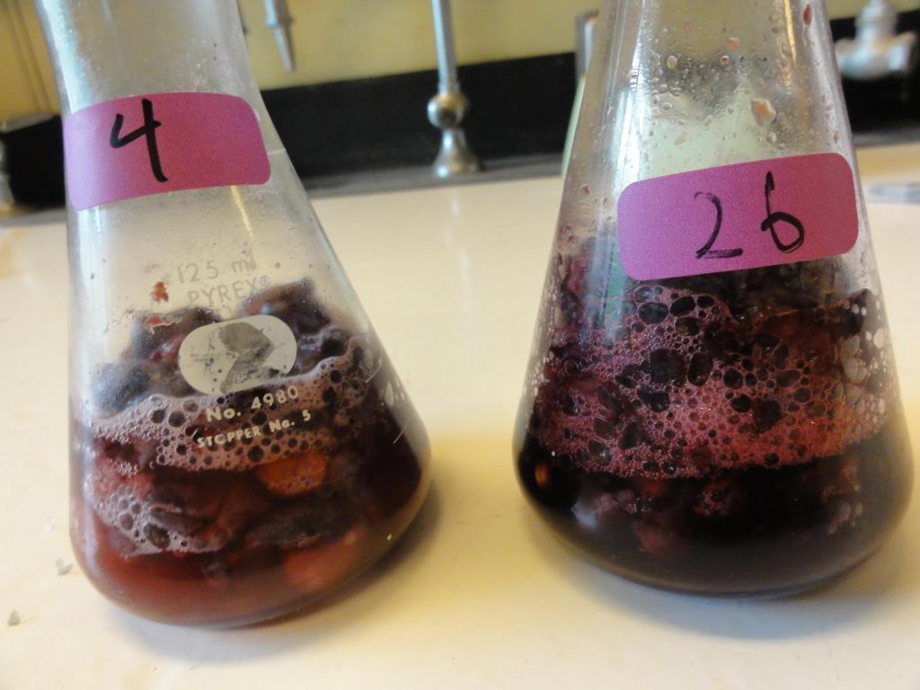 La compréhension des techniques d'analyse associées au contrôle de la qualité de la production viticole est un élément essentiel de la profession d'œnologue.