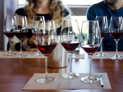 Des oenologues goûtent les vins avec des participants au cours d'un test sur l'amélioration de la qualité du vin pour diagnostiquer les défauts du vin.
