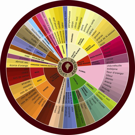 Roue des aromes du vin