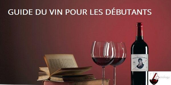 Tout savoir sur le vin, le Guide du vin pour débutants