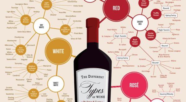 apprendre les bases du vin