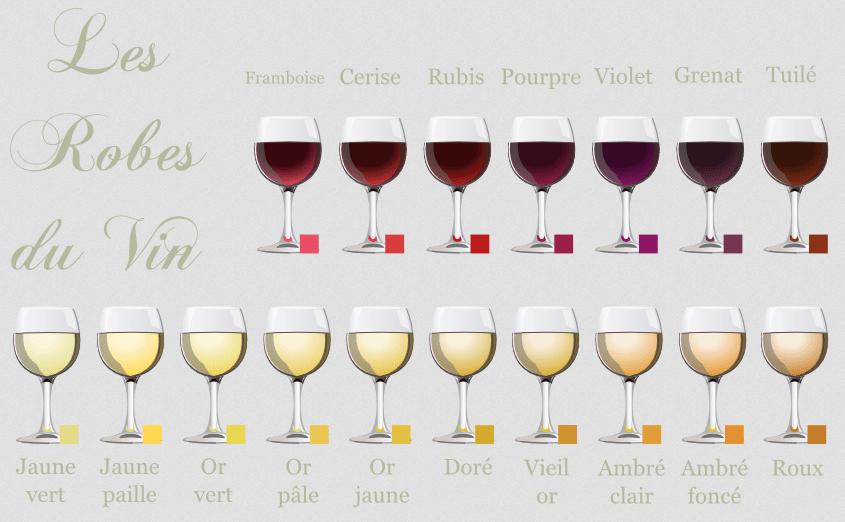 Quelle est la différence entre le vin rouge et le vin blanc ? les teintes