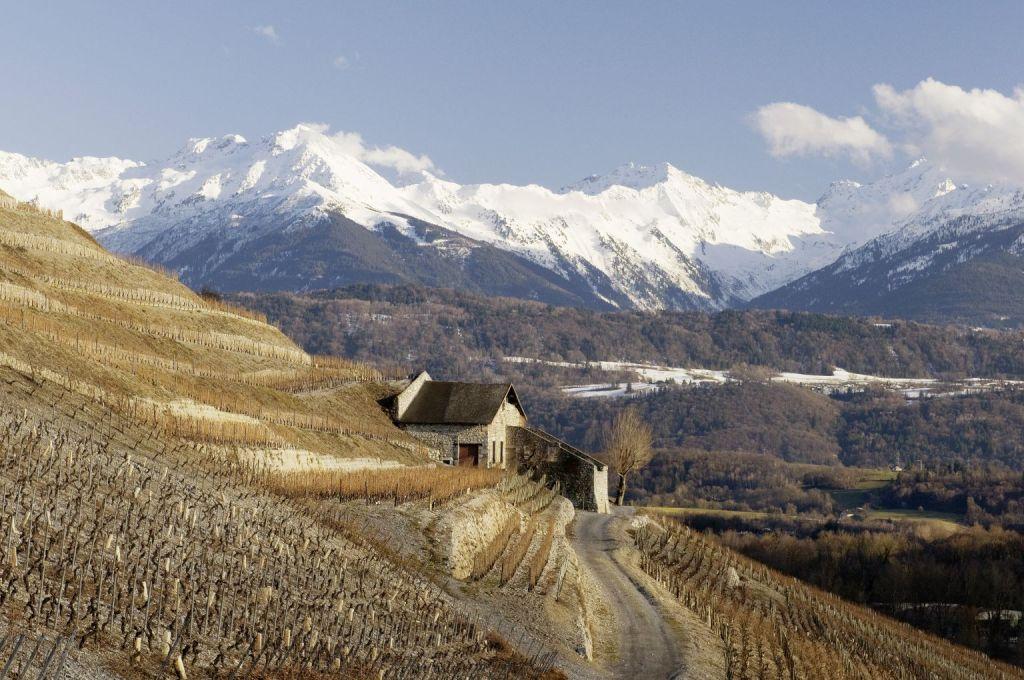 Vignobles de Montmelian Arbin