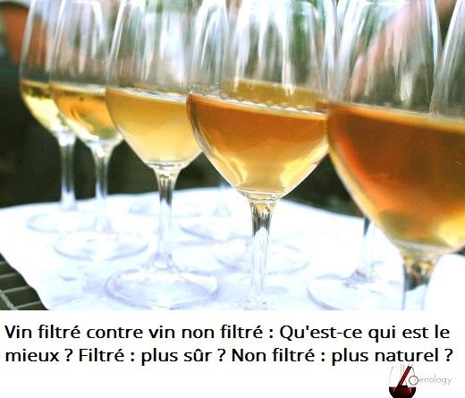 Vin filtré contre vin non filtré : Qu'est-ce qui est le mieux ?
