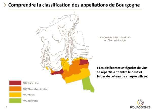 Classifications crus Appellation