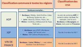 Classement des vins français - AOC - Appellation Les trois classifications de base des vins en France.