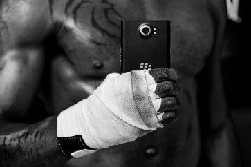 Blackberry - boxer ©Peter Arnell