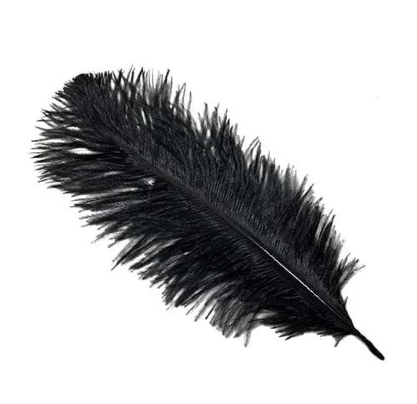 pendiente pluma significado