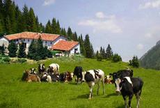 Agriturismo: Volterra, incontro sulla nuova legge regionale