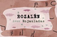 'Aves Enjauladas' de Rozalén, canción más vendida en digital la última semana en España