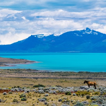 Patagonia Argentina, Argentina, Travel Photography, Vin Images