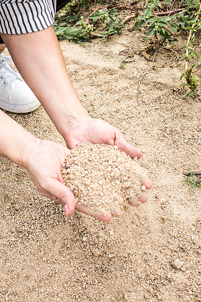 Terreni da disfacimento granitico ad Oliena