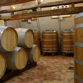 wine ripening