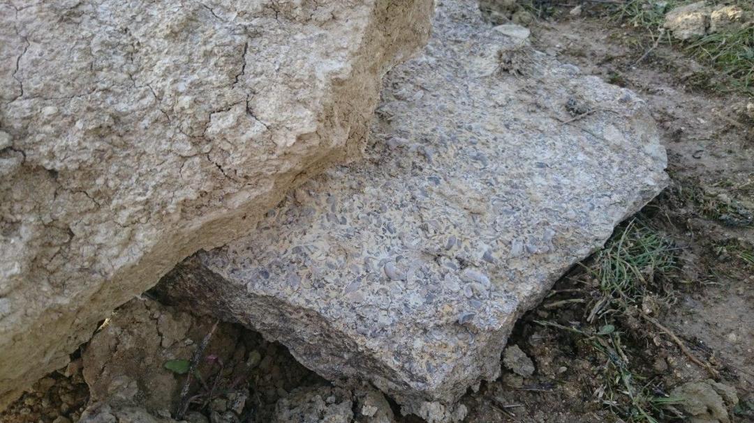 Visites guidées classiques découverte des sols