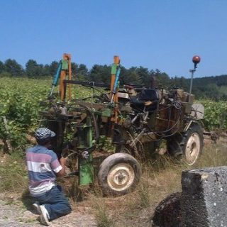 winemaker-at-work