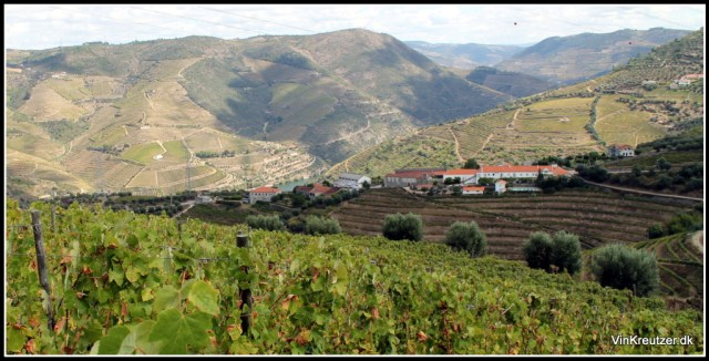 Eufemia Port Wine Douro